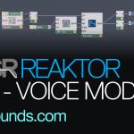 voice module reaktor 5.9.2